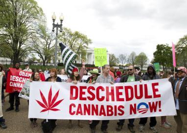 ct-white-house-marijuana-protest-20160402-001